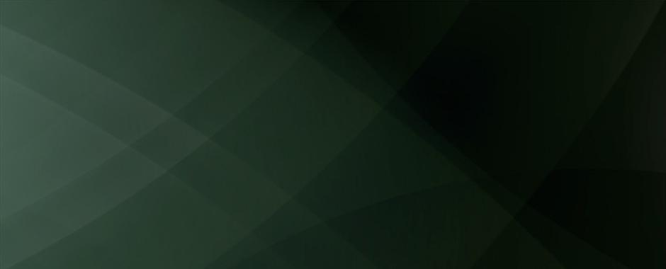 Steve Soult Ltd green background image